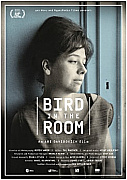Bird in the Room